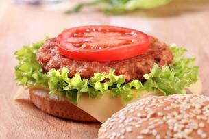 Cheeseburgerの素材 [FYI00775566]