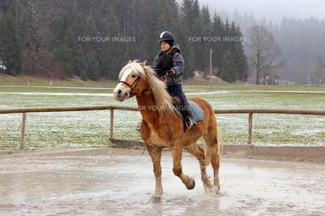 equitation_sportsの写真素材 [FYI00776293]