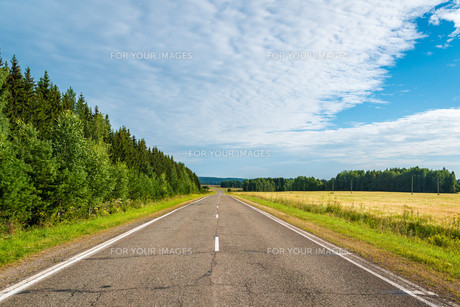 Highway in northen countryside with forest and wheat fields on a summer dayの写真素材 [FYI00776294]