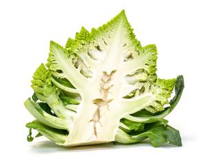Half Green Fresh Romanesque Cauliflowerの写真素材 [FYI00776352]