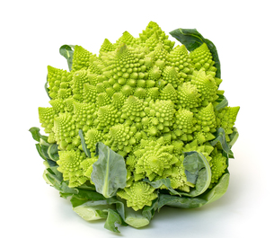 Green Fresh Romanesque Cauliflowerの写真素材 [FYI00776355]