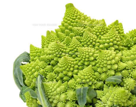 Green Fresh Romanesque Cauliflowerの写真素材 [FYI00776359]