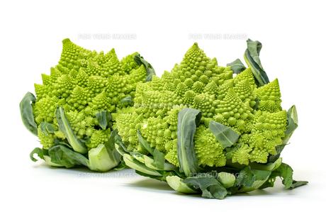Two Green Fresh Romanesque Cauliflowerの写真素材 [FYI00776366]