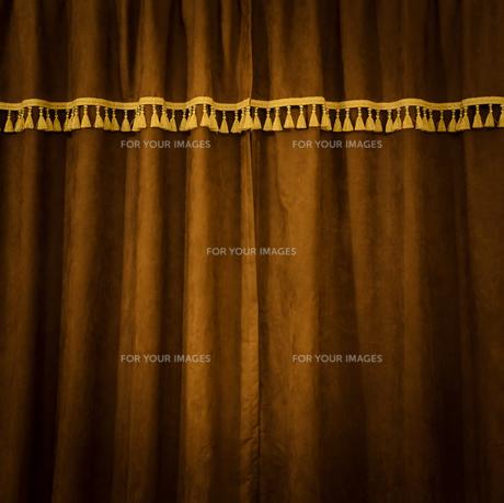 Brown velvet certainの素材 [FYI00776757]