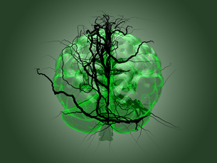 Brain root concept of a root growing in the shape of a human brain.の写真素材 [FYI00776806]