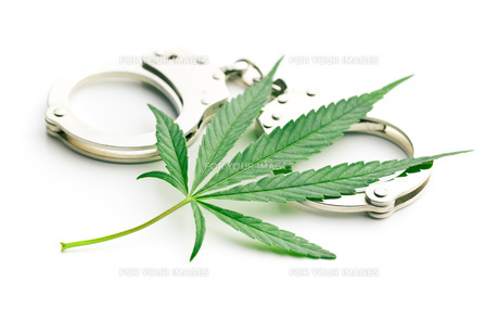 cannabis leaf and handcuffsの写真素材 [FYI00777413]