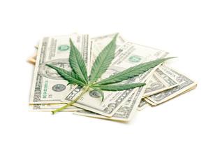 cannabis leaf and moneyの写真素材 [FYI00777437]