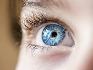 insightful look blue eyes boyの写真素材 [FYI00777773]