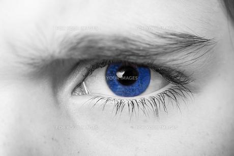 insightful look blue eyes boyの素材 [FYI00777786]
