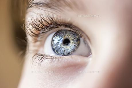 insightful look blue eyes boyの素材 [FYI00777815]