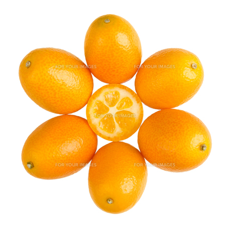 Oval Kumquats Forming A Sun Symbol On White Backgroundの写真素材 [FYI00777942]