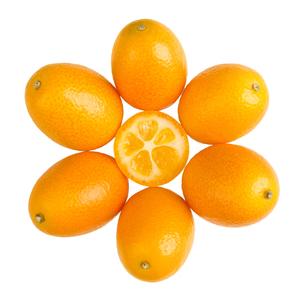 Oval Kumquats Forming A Sun Symbol On White Backgroundの素材 [FYI00777942]