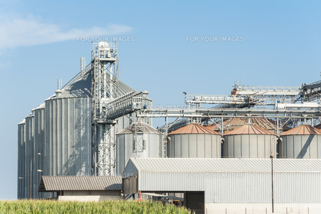 Factory for drying and storage of cerealsの写真素材 [FYI00777944]