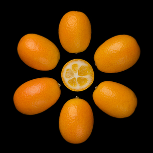 Oval Kumquats Forming A Sun Symbol On Black Backgroundの写真素材 [FYI00777945]