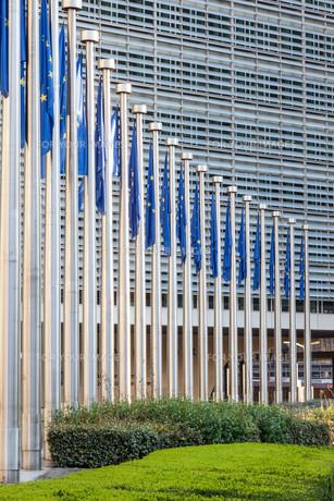 European Union flags in Brusselsの写真素材 [FYI00778073]