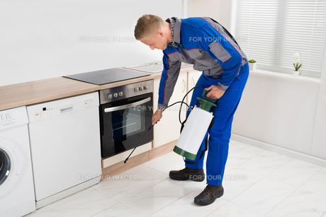 Man Spraying Pesticide In Kitchen Roomの写真素材 [FYI00778465]