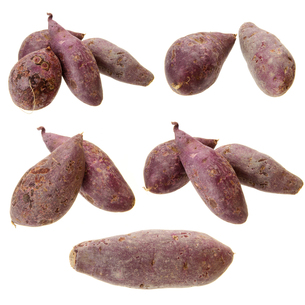 purple sweet potatoの写真素材 [FYI00779053]