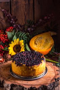 autumn pumpkin cheesecake with cranberriesの写真素材 [FYI00780470]