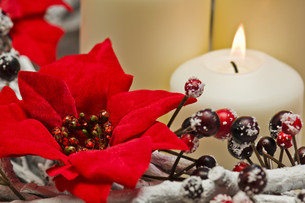 White candles in autumn winter decorationの素材 [FYI00780487]