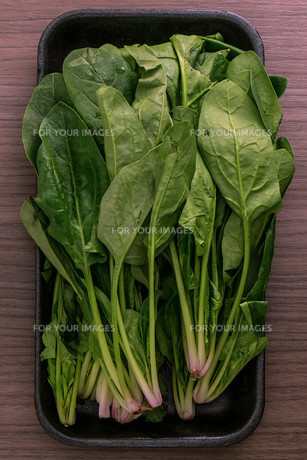 Green spinachの写真素材 [FYI00780595]
