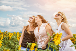 Three friends having a good time outdoorsの写真素材 [FYI00781004]