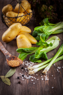 Raw vegetables with spicesの写真素材 [FYI00781702]