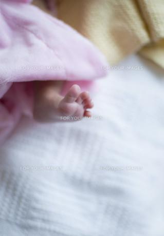 Newborn baby feet close upの素材 [FYI00781985]