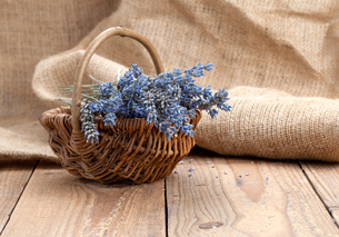 dry lavender flowers in a basket,on a wooden surfaceの写真素材 [FYI00782165]