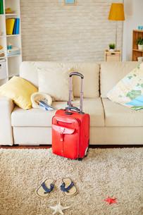 Luggage for travelの素材 [FYI00782484]