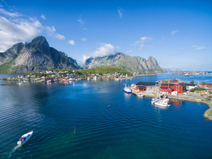 Reine fishing harborの写真素材 [FYI00782594]