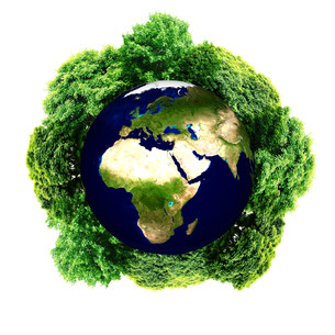 Ecology planet with with trees around. eco earth.の写真素材 [FYI00783017]