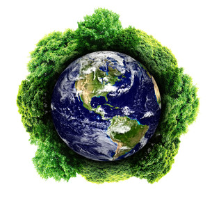 Ecology planet with with trees around. eco earth.の写真素材 [FYI00783058]