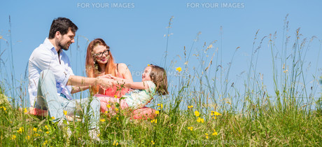 family sitting on lawn and gives children securityの写真素材 [FYI00783319]