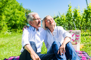 elderly man and woman at a picnic on meadowの写真素材 [FYI00783330]