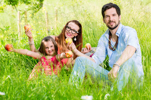 family sitting on lawn and gives children securityの写真素材 [FYI00783344]