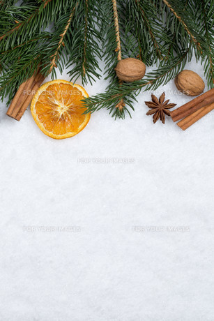 christmas background with fir,pine branches,snow and copy spaceの写真素材 [FYI00783393]