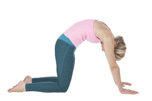 yoga_majariasana_step_3の写真素材 [FYI00783629]