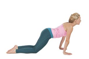 yoga_adho mukha svanasana_step_1の写真素材 [FYI00783649]