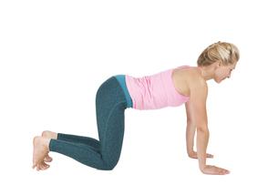 yoga_adho mukha svanasana_step_1の写真素材 [FYI00783660]