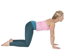 yoga_majariasana_step_4の写真素材 [FYI00783666]