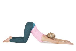 yoga_adho mukha svanasana_step_1の写真素材 [FYI00783680]