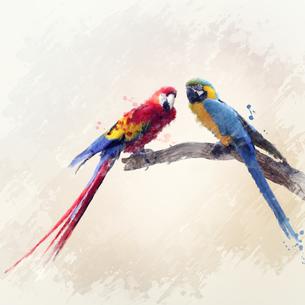 birdsの素材 [FYI00783737]