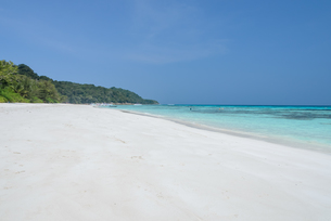 White sand beach of tropical crystal clear water at Tachai island, Thailandの写真素材 [FYI00783967]