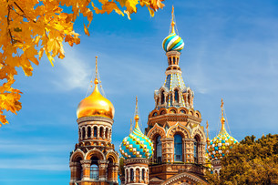 Church of the Savior on Spilled Bloodの写真素材 [FYI00784403]
