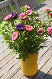 herbstastern in yellow vase on wooden tableの写真素材 [FYI00784693]