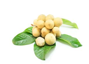Longkong fruit (Lansium parasiticum)  on white backgroundの写真素材 [FYI00785295]