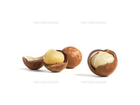 macadamia nutsの素材 [FYI00785334]