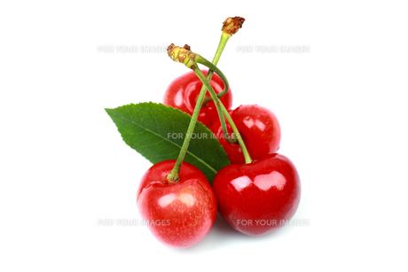 Berry Fruitの写真素材 [FYI00785652]