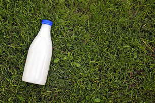 top view of milk bottle on the grass with copy spaceの写真素材 [FYI00786966]