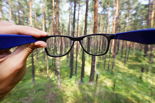 optical eyeglasses in the hand over blurred forest backgroundの写真素材 [FYI00786969]